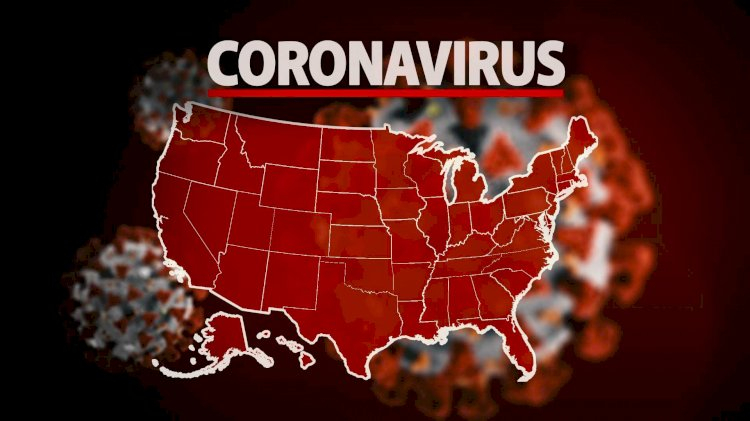 US Inefficient Response To Pandemic Plunges Down Its International Image