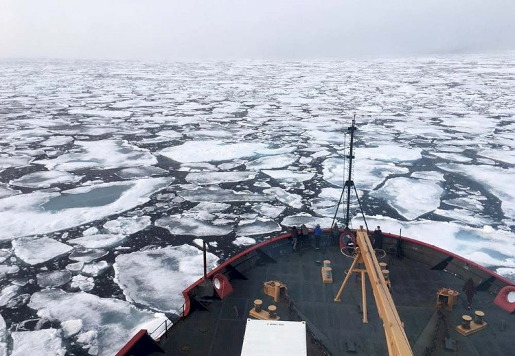 Heatwave Shrinks Arctic Sea Ice To Second Lowest Level