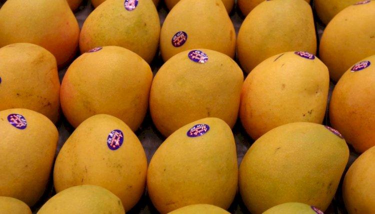 Prince Charles Praised Pakistani Mangoes