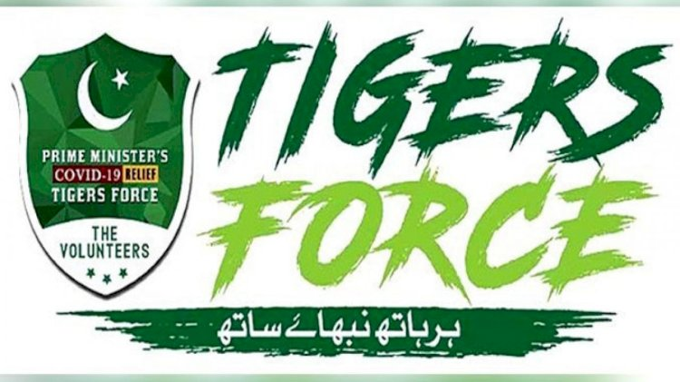 Tiger Force In Action Against Hoarding Mafia