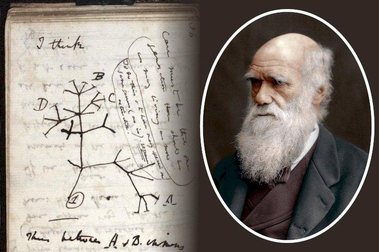 Notebooks Of Charles Darwin Stolen From Cambridge University