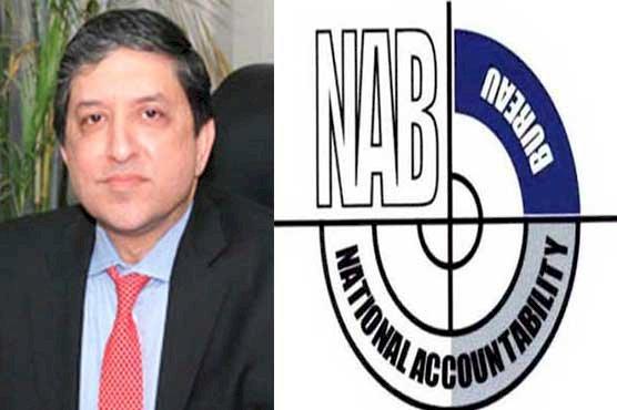 Saleem Mandviwalla Said Pakistan Senate Will Expose NAB
