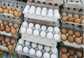 LHC Turned Down The Petition Asking For Rising The Eggs Prices