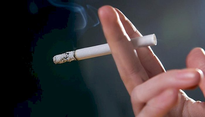 LHC Heard Petition Against Selling Of Cigarettes Near Educational Institutes