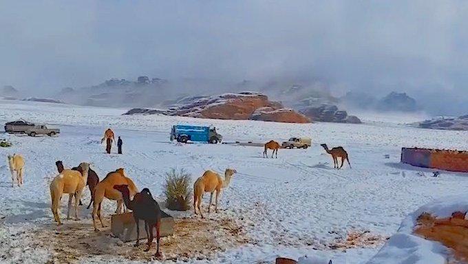 Parts Of Saudi Arabia Receive Unusual Snowstorm