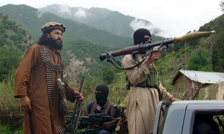 Gunmen killed four female social workers in North Waziristan