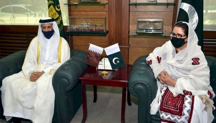 Pakistan Offers Military Training To Qatar