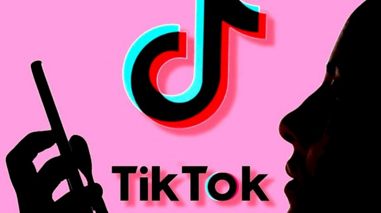 TikTok prohibited in Pakistan by Peshawar High Court for 'immoral content'
