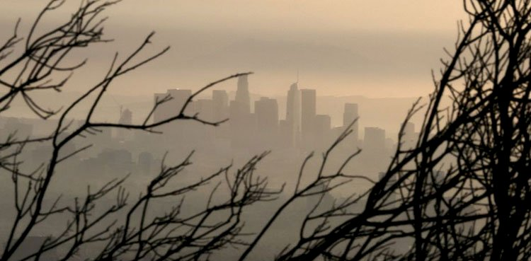 Carbon Dioxide In The Air At The Peak Level Since Analysis : NOAA