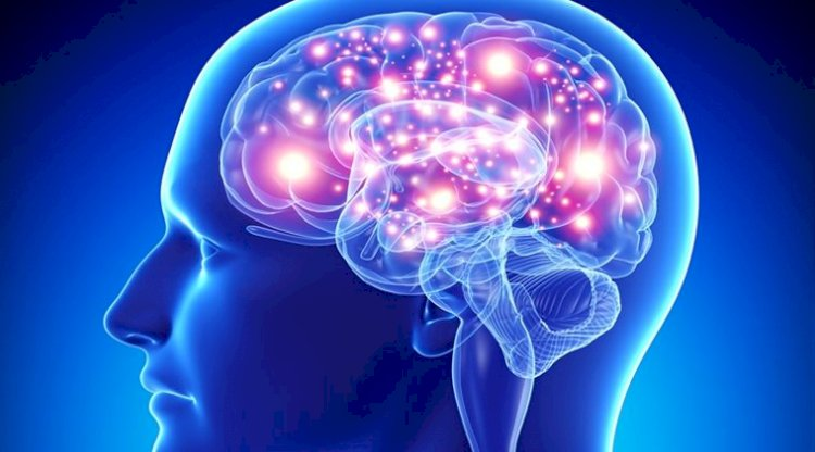 Few Best Foods to Boost Brain's Functioning