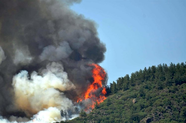 Massive Forest Fires in Southern Turkey.